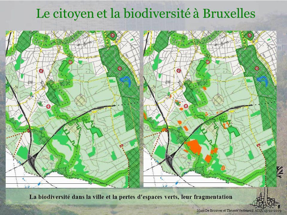 Biodiversité Le citoyen et la biodiversité à Bruxelles Marc De Brouwer et Thérèse Verteneuil ACQU 15-10-2009 La biodiversité dans la ville et la perte