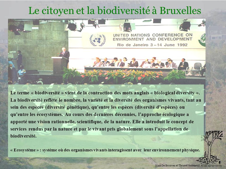 Biodiversité Le citoyen et la biodiversité à Bruxelles Marc De Brouwer et Thérèse Verteneuil ACQU 15-10-2009 Le terme « biodiversité » vient de la con
