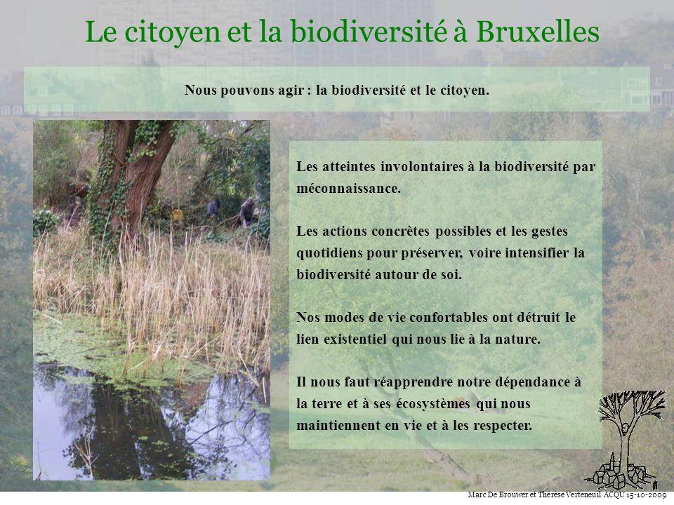 Biodiversité Le citoyen et la biodiversité à Bruxelles Marc De Brouwer et Thérèse Verteneuil ACQU 15-10-2009 Nous pouvons agir : la biodiversité et le