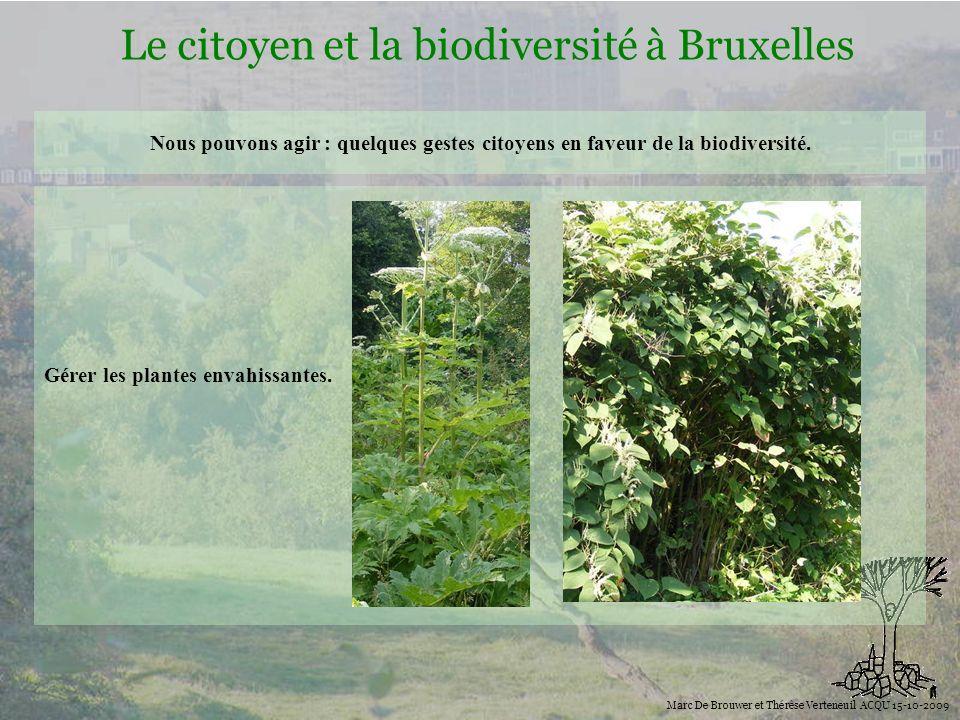 Biodiversité Le citoyen et la biodiversité à Bruxelles Marc De Brouwer et Thérèse Verteneuil ACQU 15-10-2009 Nous pouvons agir : quelques gestes citoy