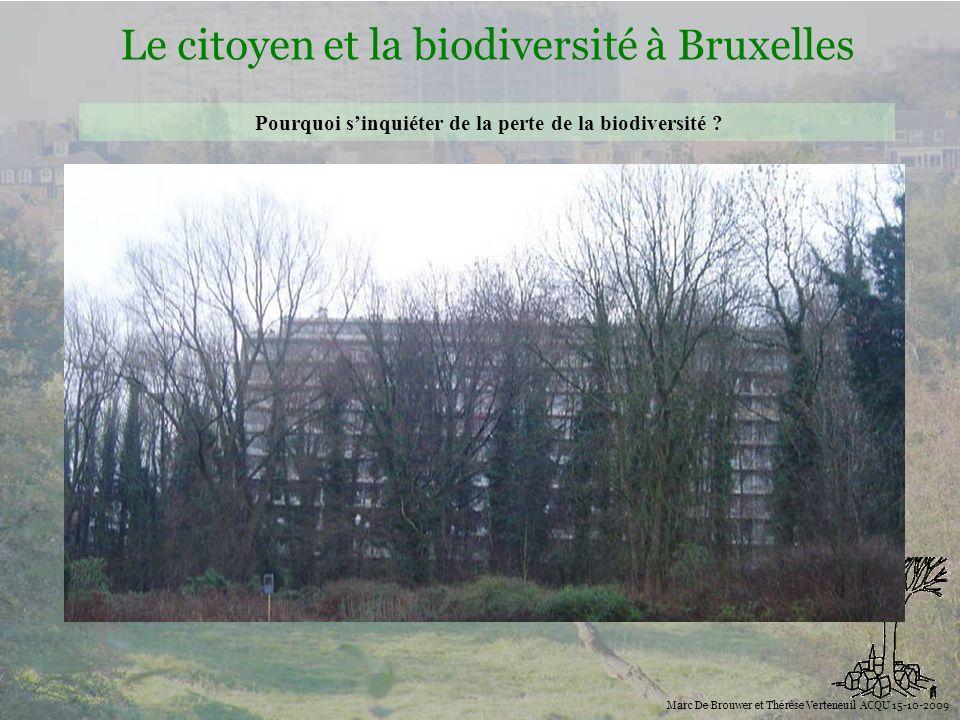 Biodiversité Le citoyen et la biodiversité à Bruxelles Marc De Brouwer et Thérèse Verteneuil ACQU 15-10-2009 Pourquoi sinquiéter de la perte de la biodiversité .