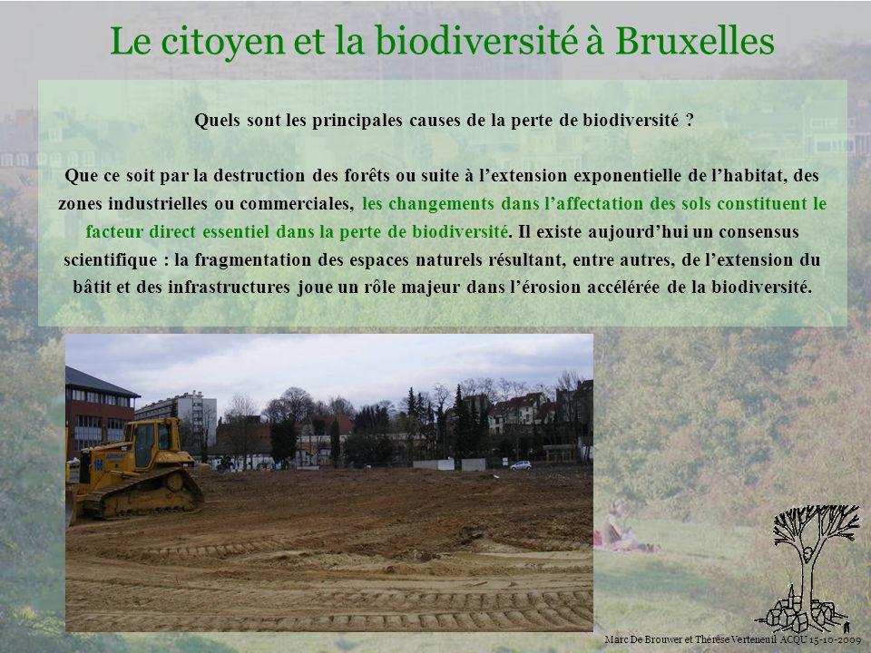 Biodiversité Le citoyen et la biodiversité à Bruxelles Marc De Brouwer et Thérèse Verteneuil ACQU 15-10-2009 La biodiversité dans la ville et la pertes d espaces verts, leur fragmentation