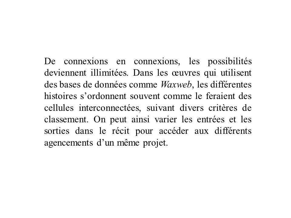 De connexions en connexions, les possibilités deviennent illimitées. Dans les œuvres qui utilisent des bases de données comme Waxweb, les différentes