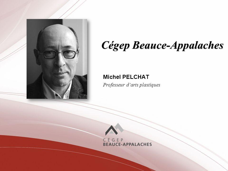 Cégep Beauce-Appalaches Michel PELCHAT Professeur darts plastiques