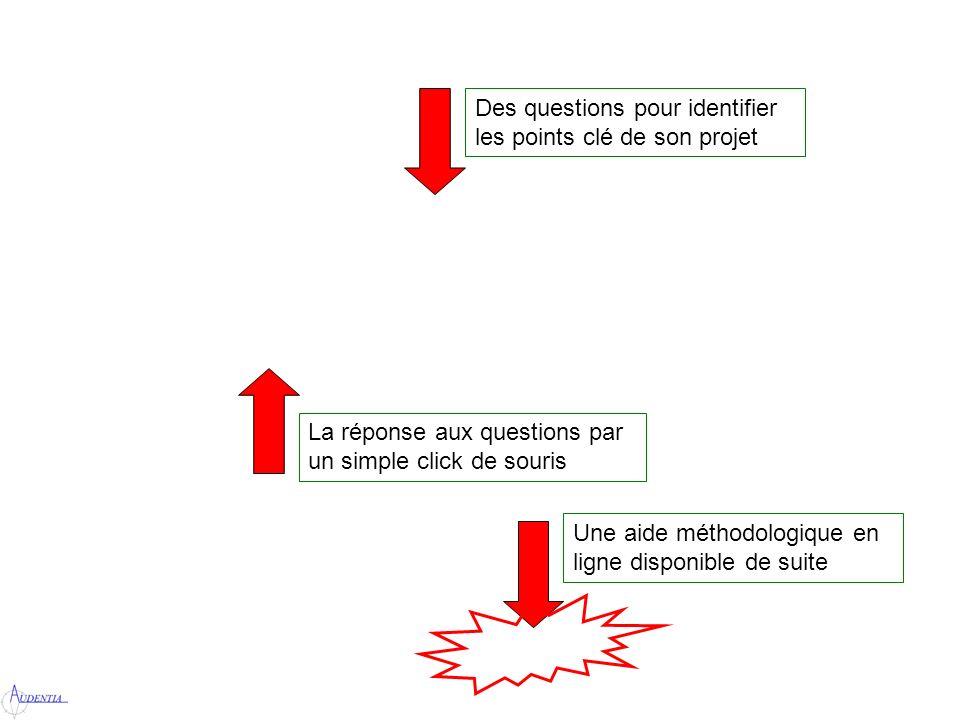 Des questions pour identifier les points clé de son projet La réponse aux questions par un simple click de souris Une aide méthodologique en ligne disponible de suite