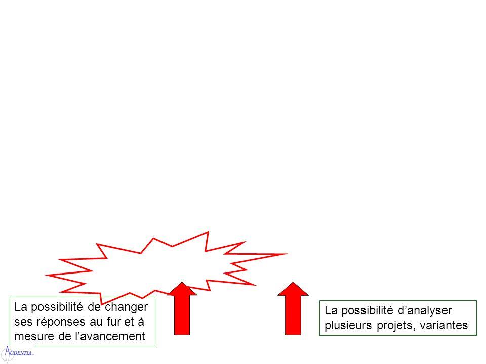 La possibilité de changer ses réponses au fur et à mesure de lavancement La possibilité danalyser plusieurs projets, variantes
