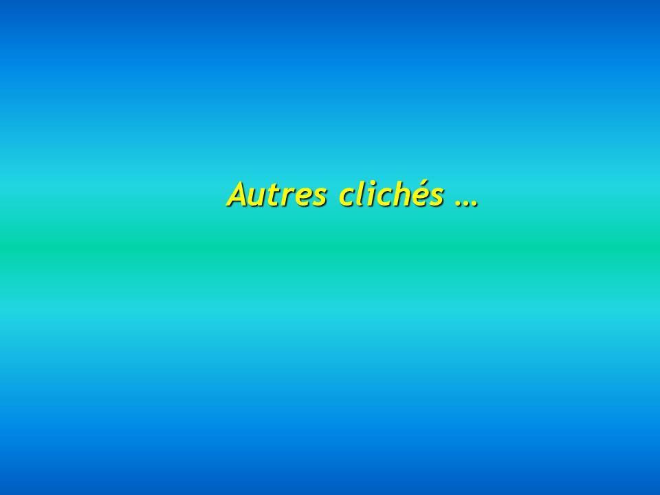 Antarès est la 15ème étoile la plus brillante du ciel. Elle se trouve à plus de 1000 années-lumière. Soleil– 1 pixel Jupiter est invisible à cette éch