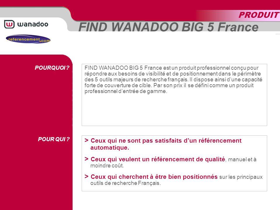 FIND WANADOO BIG 5 France EXPERTISE OUTILS DE RECHERCHE MOTS CLÉS REPORTING FIND WANADOO BIG 5 FRANCE recoupe la cible dinternautes sur les 5 principaux outils de recherche français à plus fort trafic.