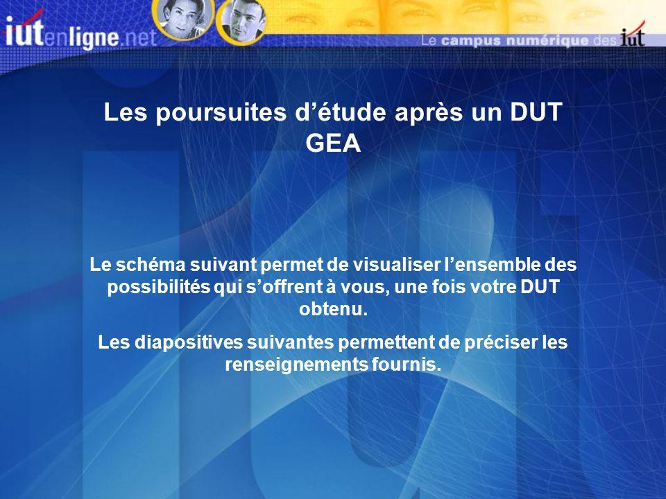 DUT GEA Licences professionnelles À létranger : formations professionnelles D.U.