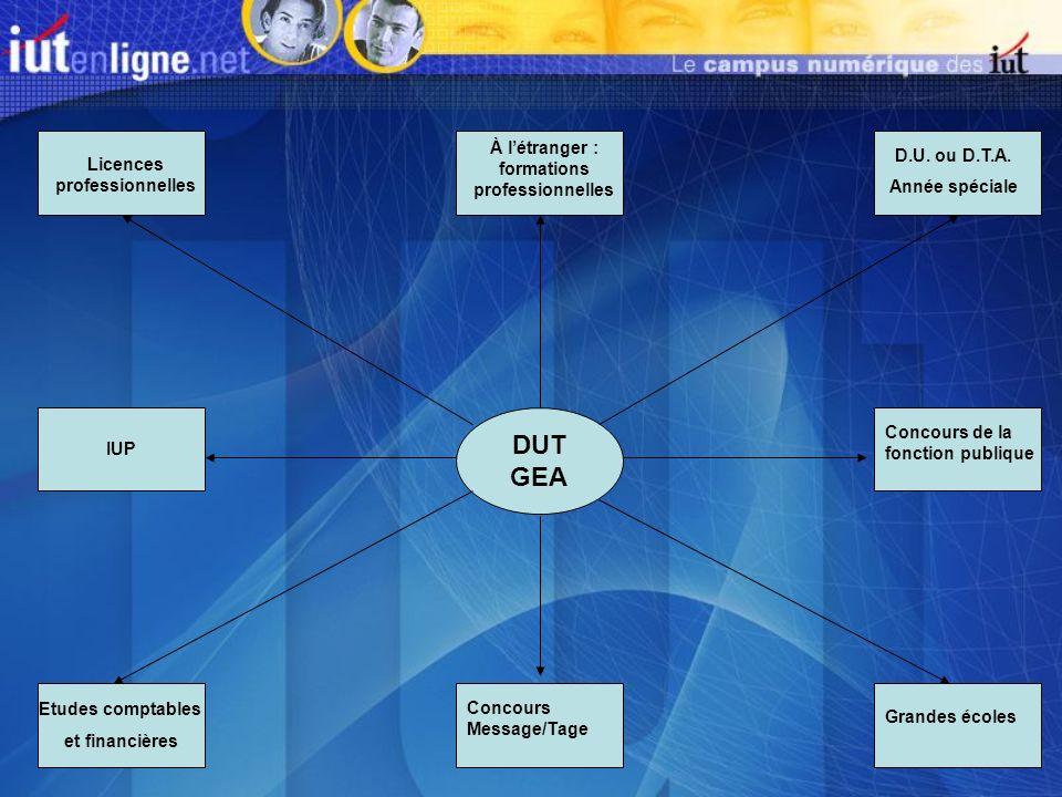 DUT GEA Licences professionnelles À létranger : formations professionnelles D.U. ou D.T.A. Année spéciale Etudes comptables et financières IUP Concour