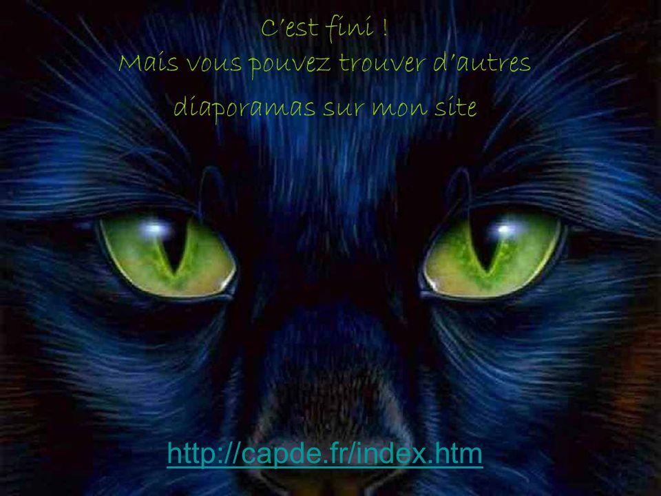 Cest fini ! Mais vous pouvez trouver dautres diaporamas sur mon site http://capde.fr/index.htm http://capde.fr/index.htm