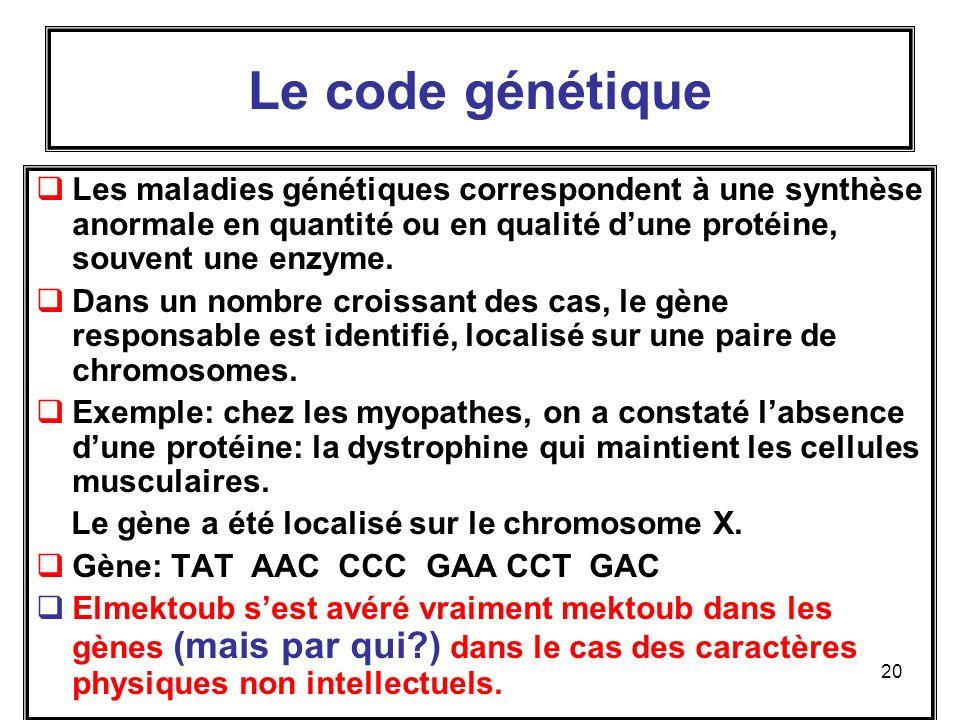20 Le code génétique Les maladies génétiques correspondent à une synthèse anormale en quantité ou en qualité dune protéine, souvent une enzyme.