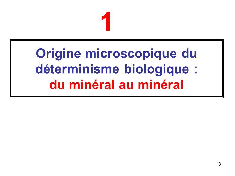 3 Origine microscopique du déterminisme biologique : du minéral au minéral 1