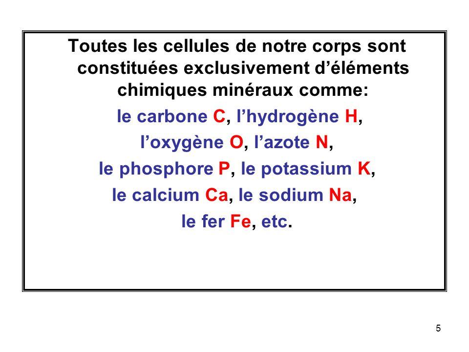 5 Toutes les cellules de notre corps sont constituées exclusivement déléments chimiques minéraux comme: le carbone C, lhydrogène H, loxygène O, lazote N, le phosphore P, le potassium K, le calcium Ca, le sodium Na, le fer Fe, etc.
