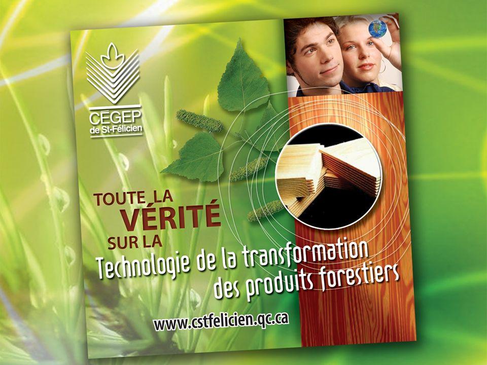 Résultats de la tournée des entreprises Méthodologie 32 entreprises visitées 5 322 emplois Saguenay-Lac-Saint-Jean, Haute Mauricie, Nord-du-Québec et Côte-Nord Mars à juin 2007