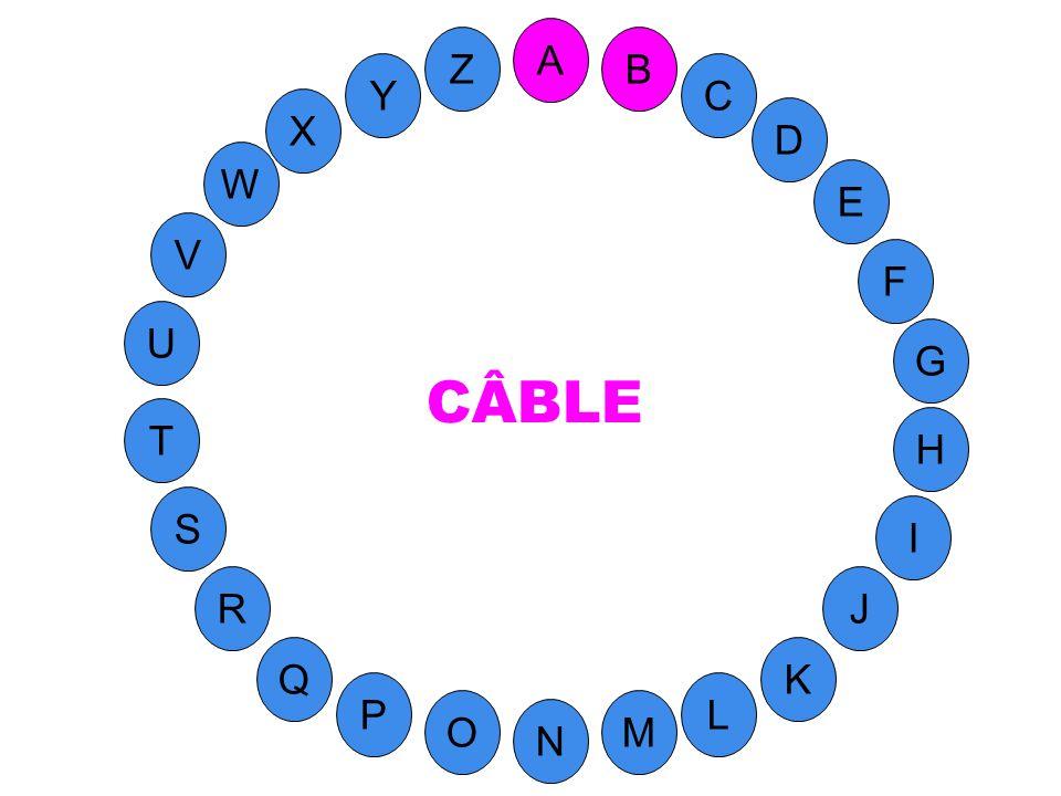 M A G S C U H W Y I F D B L K J T R Q P O N E V Z (contient le B ) Fil conducteur métallique, ou faisceau de fils protégé par des enveloppes isolantes.