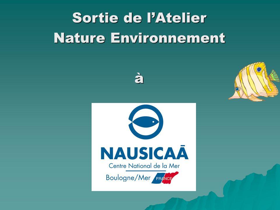 Sortie de lAtelier Nature Environnement à