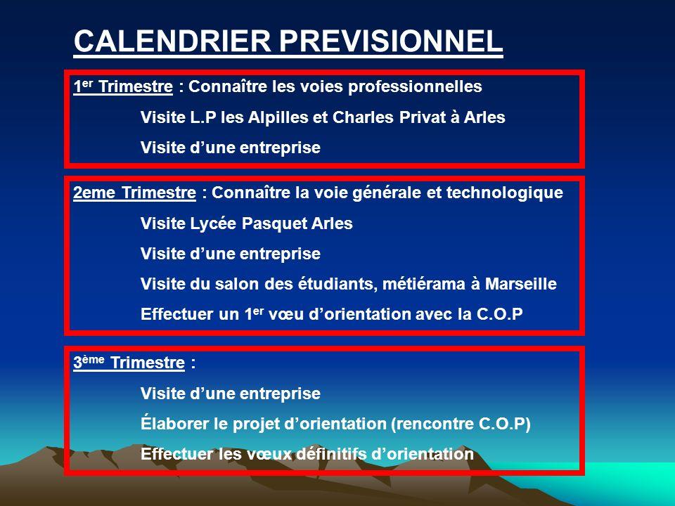 CALENDRIER PREVISIONNEL 1 er Trimestre : Connaître les voies professionnelles Visite L.P les Alpilles et Charles Privat à Arles Visite dune entreprise