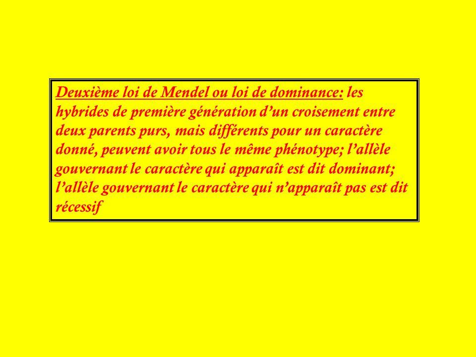 Deuxième loi de Mendel ou loi de dominance: les hybrides de première génération dun croisement entre deux parents purs, mais différents pour un caract