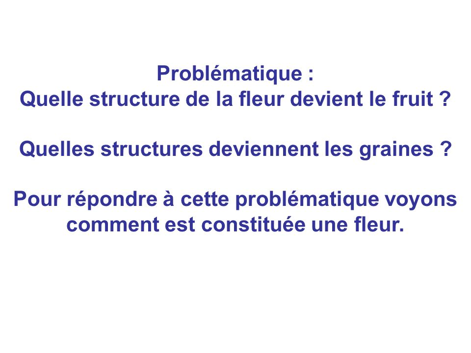 Problématique : Quelle structure de la fleur devient le fruit ? Quelles structures deviennent les graines ? Pour répondre à cette problématique voyons