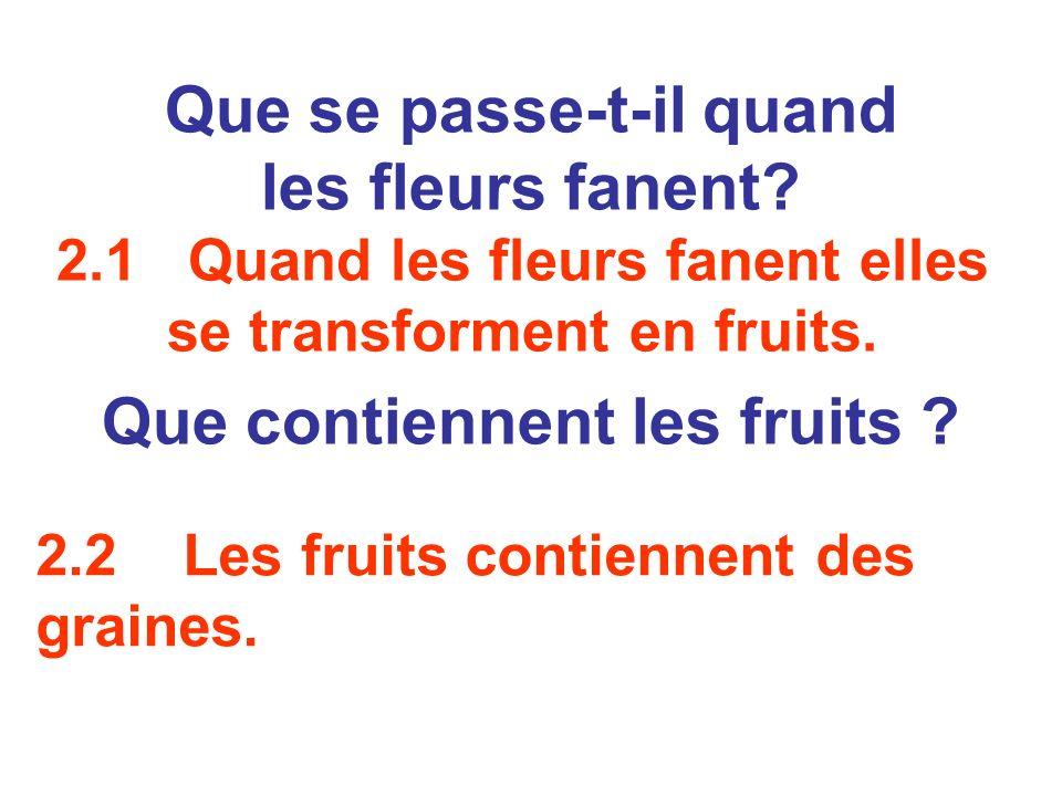 2.2 Les fruits contiennent des graines. Que se passe-t-il quand les fleurs fanent? Que contiennent les fruits ? 2.1 Quand les fleurs fanent elles se t