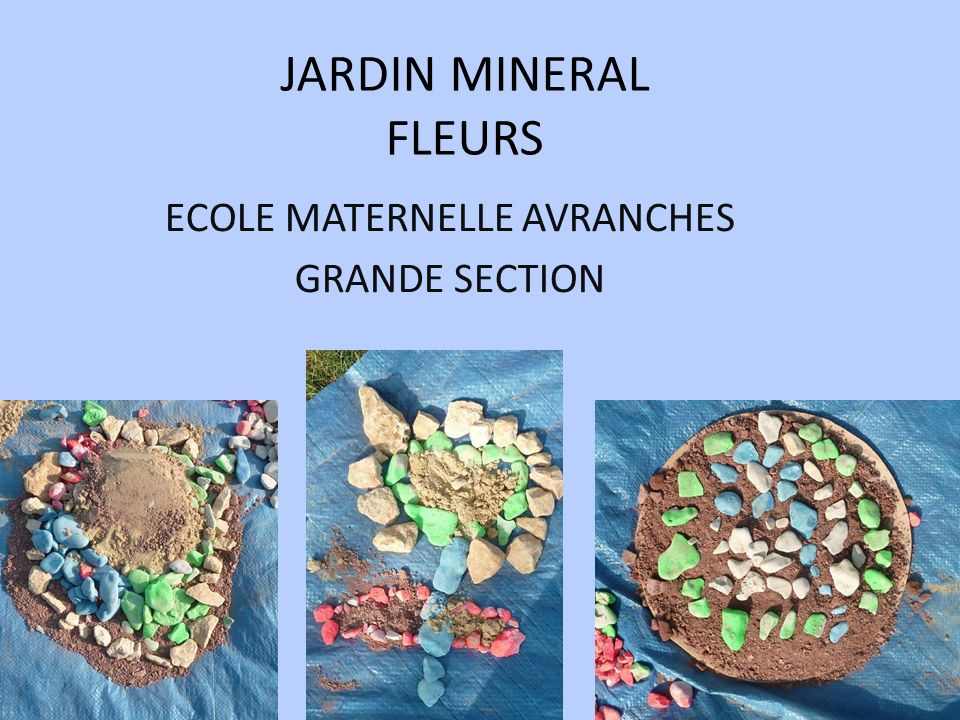 JARDIN MINERAL FLEURS ECOLE MATERNELLE AVRANCHES GRANDE SECTION