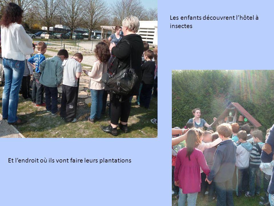 Les enfants découvrent lhôtel à insectes Et lendroit où ils vont faire leurs plantations