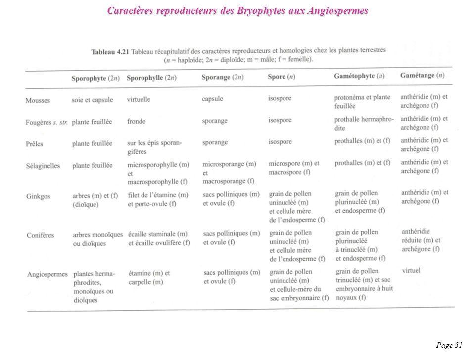 Caractères reproducteurs des Bryophytes aux Angiospermes Page 51