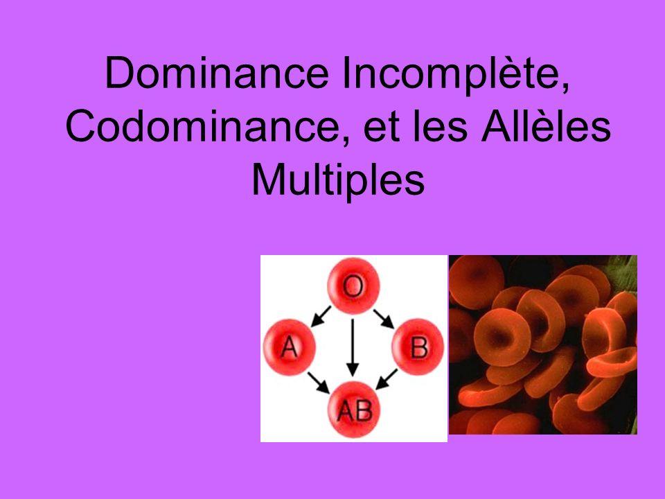 Dominance Incomplète, Codominance, et les Allèles Multiples