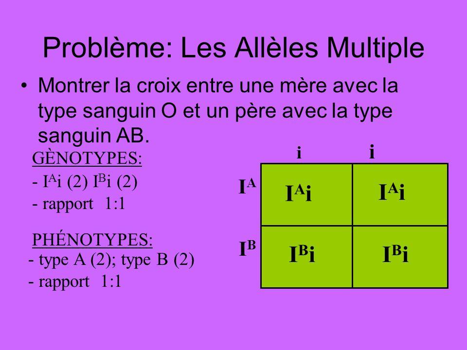 Problème: Les Allèles Multiple Montrer la croix entre une mère avec la type sanguin O et un père avec la type sanguin AB. - I A i (2) I B i (2) - rapp