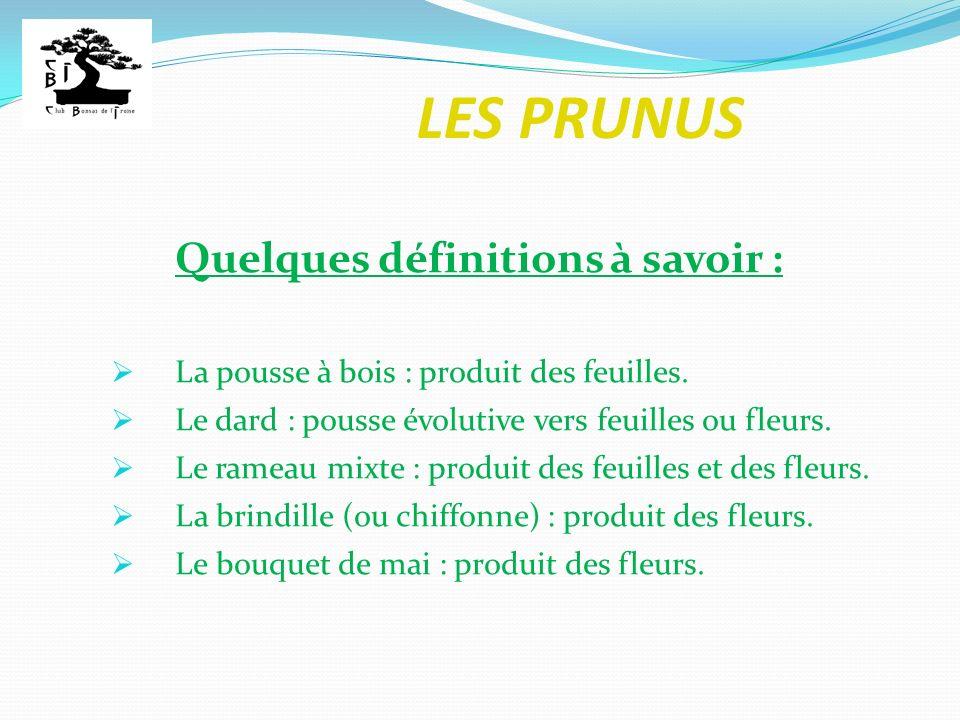 LES PRUNUS Quelques définitions à savoir : La pousse à bois : produit des feuilles. Le dard : pousse évolutive vers feuilles ou fleurs. Le rameau mixt