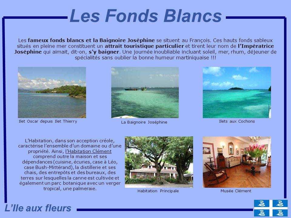 Les fameux fonds blancs et la Baignoire Joséphine se situent au François. Ces hauts fonds sableux situés en pleine mer constituent un attrait touristi