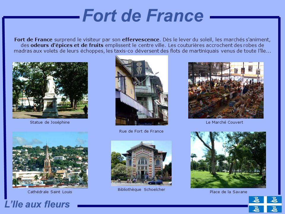 Fort de France surprend le visiteur par son effervescence. Dès le lever du soleil, les marchés s'animent, des odeurs d'épices et de fruits emplissent
