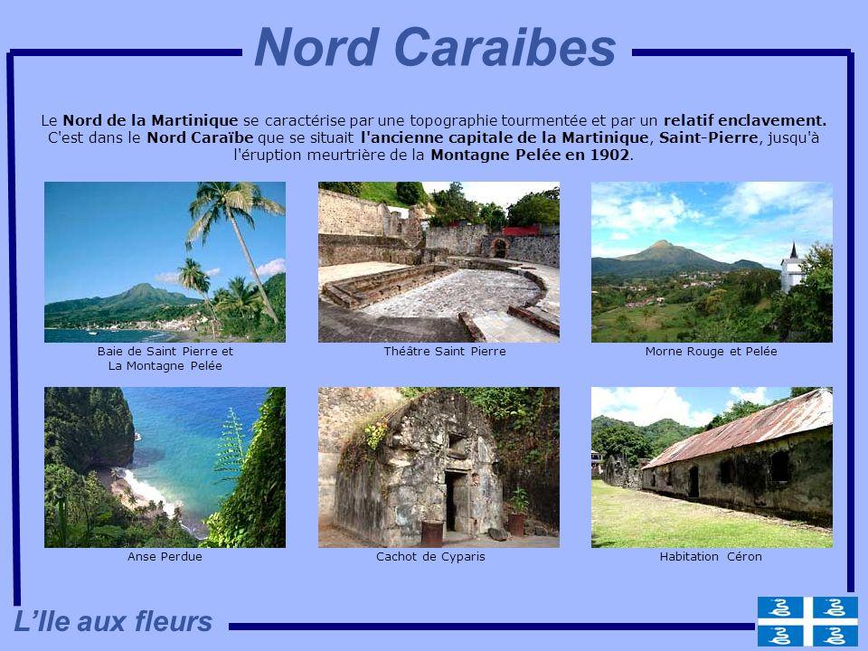 Le Nord de la Martinique se caractérise par une topographie tourmentée et par un relatif enclavement. C'est dans le Nord Caraïbe que se situait l'anci