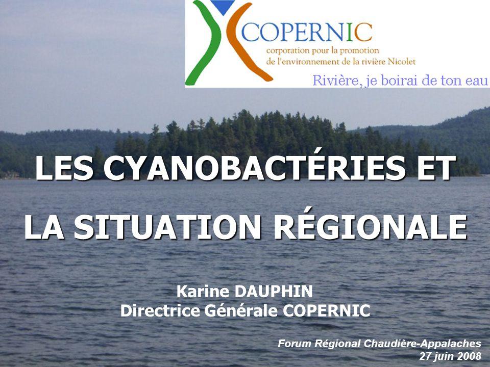 LES CYANOBACTÉRIES ET LA SITUATION RÉGIONALE Forum Régional Chaudière-Appalaches 27 juin 2008 Karine DAUPHIN Directrice Générale COPERNIC