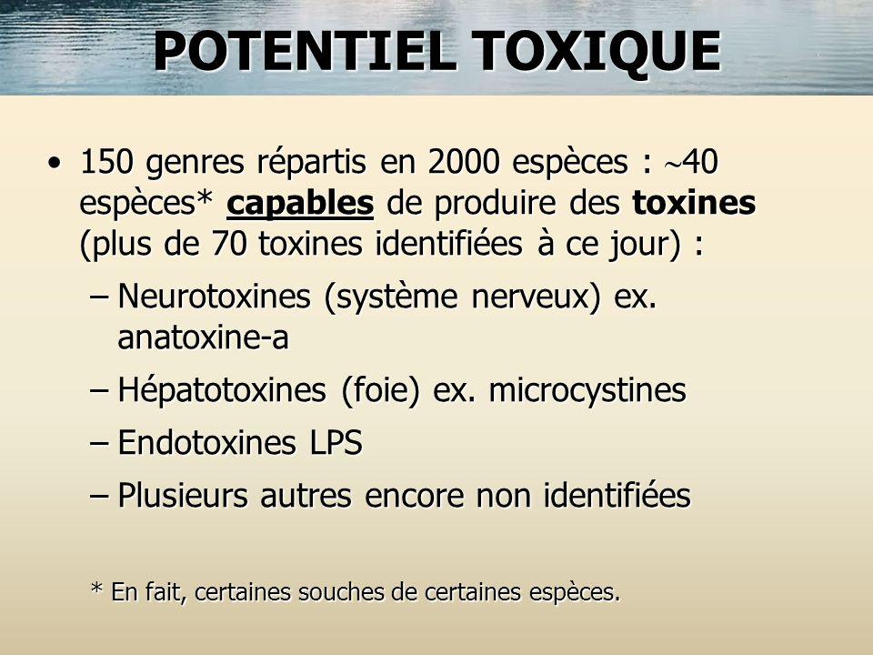 150 genres répartis en 2000 espèces : 40 espèces* capables de produire des toxines (plus de 70 toxines identifiées à ce jour) :150 genres répartis en