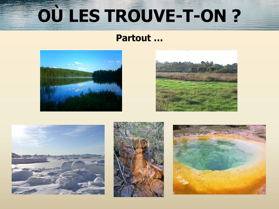 OÙ LES TROUVE-T-ON ? Partout …