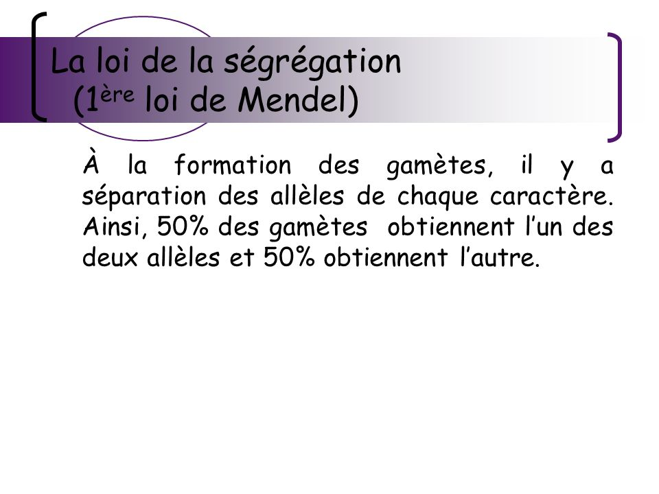 La loi de la ségrégation (1 ère loi de Mendel) À la formation des gamètes, il y a séparation des allèles de chaque caractère. Ainsi, 50% des gamètes o