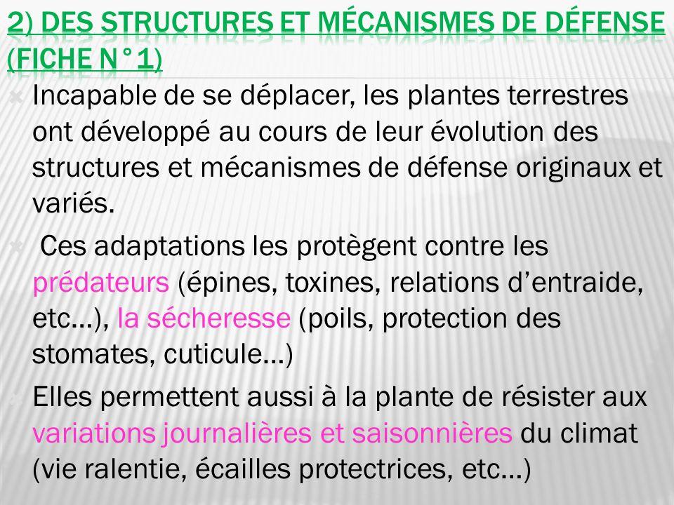 Incapable de se déplacer, les plantes terrestres ont développé au cours de leur évolution des structures et mécanismes de défense originaux et variés.