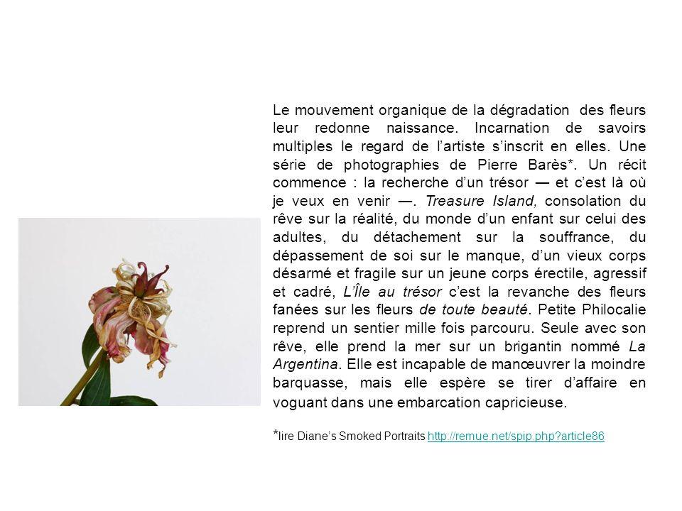 Le mouvement organique de la dégradation des fleurs leur redonne naissance. Incarnation de savoirs multiples le regard de lartiste sinscrit en elles.