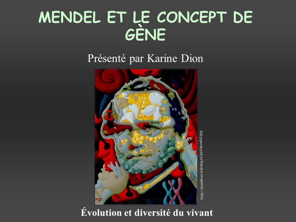 MENDEL ET LE CONCEPT DE GÈNE Présenté par Karine Dion Évolution et diversité du vivant http://members.telering.at/pat/mendel.jpg
