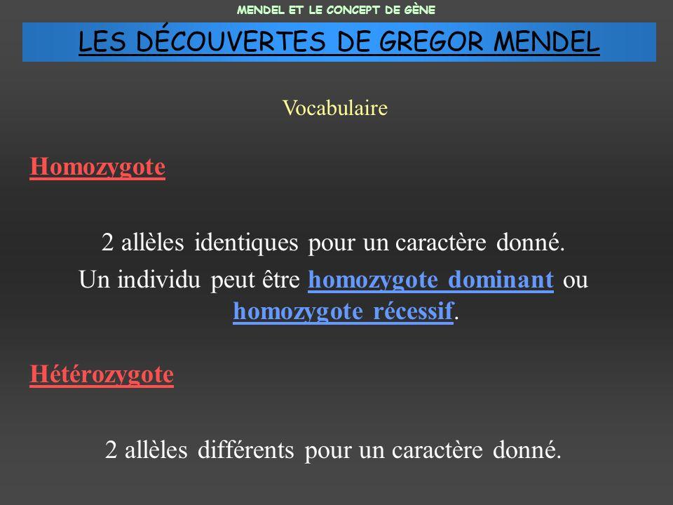Homozygote 2 allèles identiques pour un caractère donné. Un individu peut être homozygote dominant ou homozygote récessif. Hétérozygote 2 allèles diff