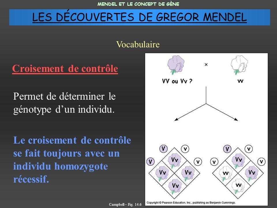 Croisement de contrôle Permet de déterminer le génotype dun individu.