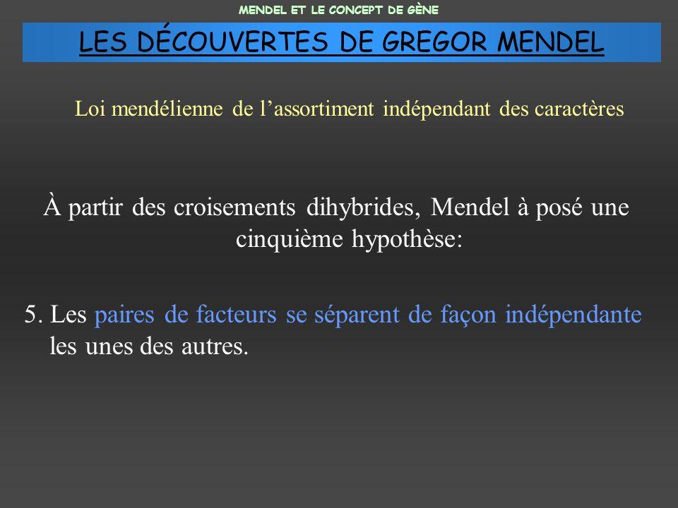 À partir des croisements dihybrides, Mendel à posé une cinquième hypothèse: 5. Les paires de facteurs se séparent de façon indépendante les unes des a