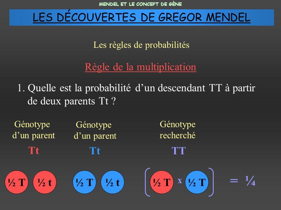 Règle de la multiplication 1. Quelle est la probabilité dun descendant TT à partir de deux parents Tt ? MENDEL ET LE CONCEPT DE GÈNE Les règles de pro