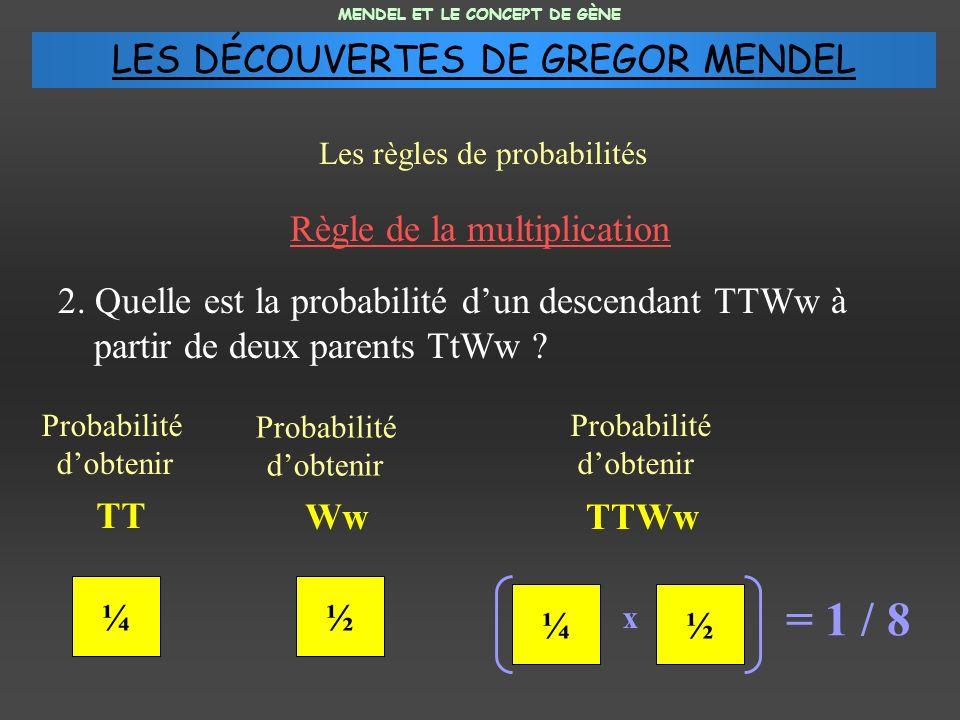 Règle de la multiplication 2. Quelle est la probabilité dun descendant TTWw à partir de deux parents TtWw ? MENDEL ET LE CONCEPT DE GÈNE Les règles de