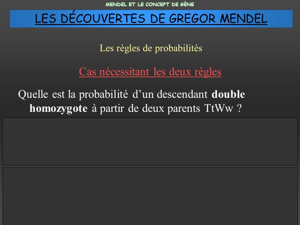 Quelle est la probabilité dun descendant double homozygote à partir de deux parents TtWw ? MENDEL ET LE CONCEPT DE GÈNE Les règles de probabilités Gén
