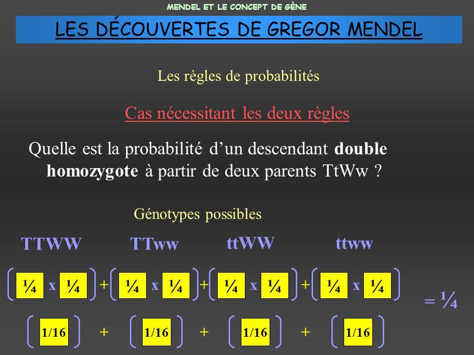 Quelle est la probabilité dun descendant double homozygote à partir de deux parents TtWw .