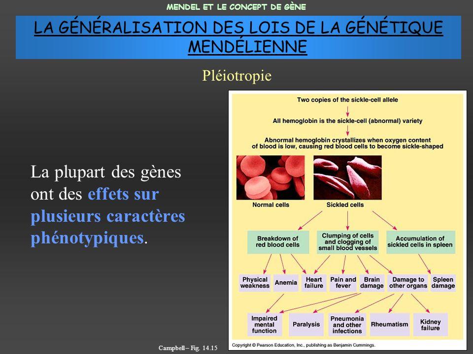 La plupart des gènes ont des effets sur plusieurs caractères phénotypiques. MENDEL ET LE CONCEPT DE GÈNE Pléiotropie Campbell – Fig. 14.15 LA GÉNÉRALI