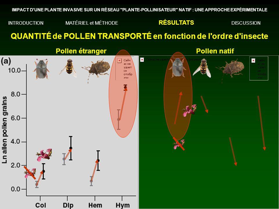 QUANTITÉ de POLLEN TRANSPORTÉ en fonction de l ordre d insecte IMPACT D UNE PLANTE INVASIVE SUR UN RÉSEAU PLANTE-POLLINISATEUR NATIF : UNE APPROCHE EXPÉRIMENTALE INTRODUCTIONMATÉRIEL et MÉTHODE RÉSULTATS DISCUSSION Pollen étrangerPollen natif